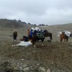 Cargando mulas para el descenso del C1 al CB.